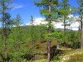 BAM Road in Sibirien