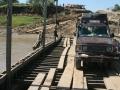 Guanaco auf der Fähre