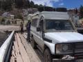 Guanaco auf dem Titicacasee