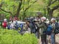 japanische Fotografen