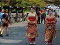 japanische Touristen als Maiko verkleidet in Nara