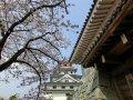 Karatsu Castle (Japan)