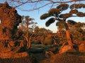 Garten in Chiran (Japan)
