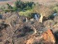 Ruacana Wasserfälle am Kunene