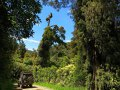 Waikaremoana Nationalpark (Neuseeland)