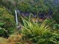 Dawson Falls am Taranaki (Neuseeland)
