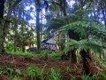Camping in Neuseeland (Neuseeland)