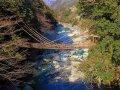Iyano Kasurabashi (Iya Vine Bridge)