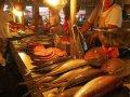 Fischverkauf in Baler