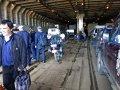 Auffahrt auf die Fähre Sakhalin 8