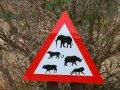 Vorsicht Wildtiere