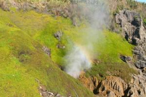 Blowhole (Neuseeland)