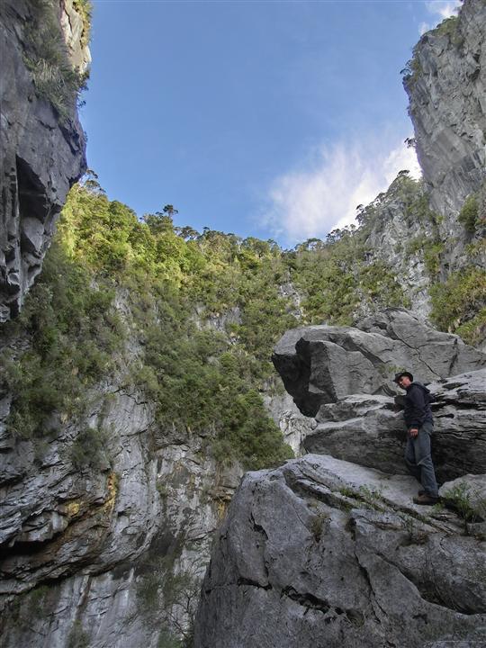 Harwood's Hole (Neuseeland)