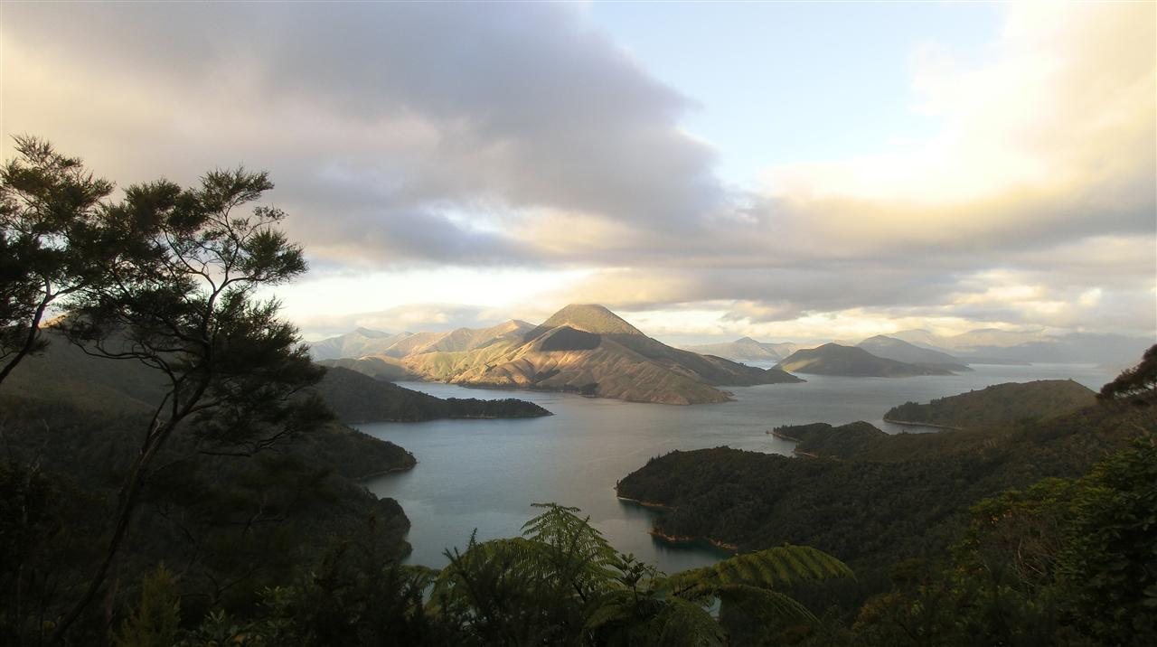Marlborough Sound (Neuseeland)