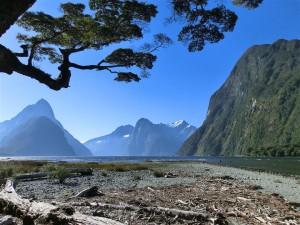 Milford Sound (Neuseeland)