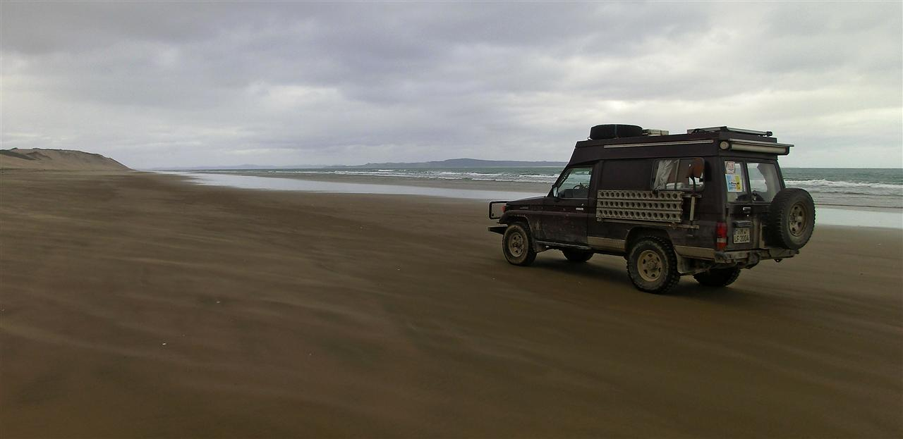 Am Strand bei Dargaville (Neuseeland)