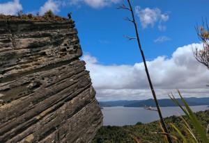 Felsen am Waikaremoana See (Neuseeland)