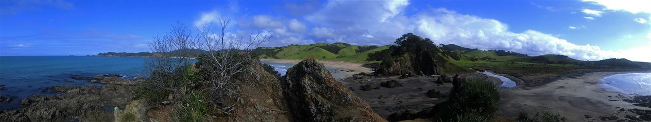 Küstenlandschaft (Neuseeland)