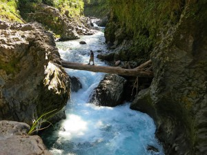 Schlucht am Tongariro River (Neuseeland)