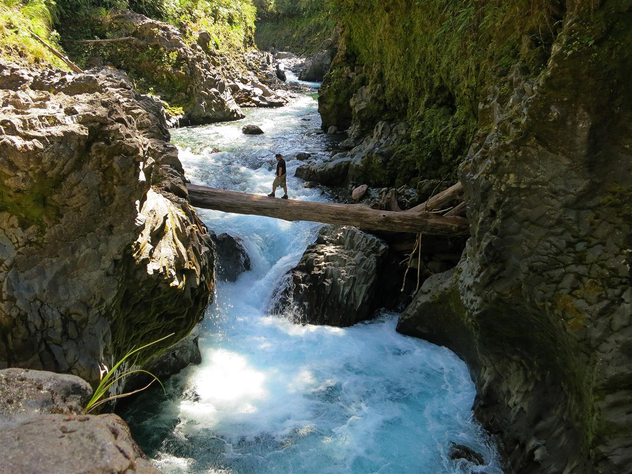 Schlucht am Tongariro River (Neuseeland)