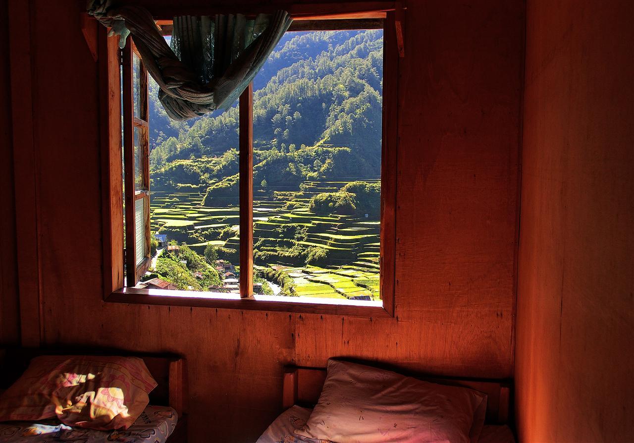 Blick auf Reisterassen (Philippinen)