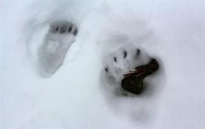 Bärenspuren im Schnee (Japan)