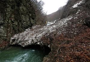 Der Weg zum Wasserfall (Japan)