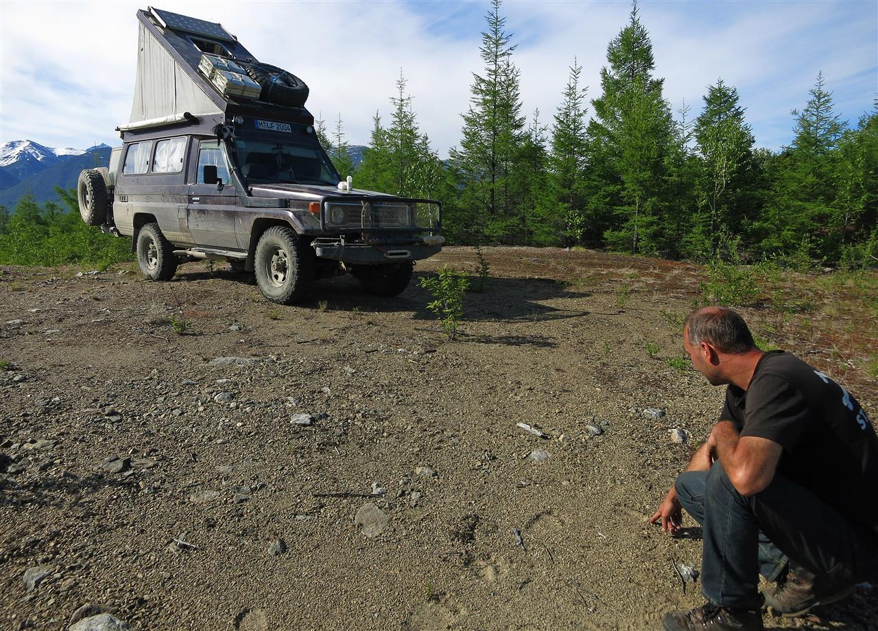 Bärenspuren (Russland)
