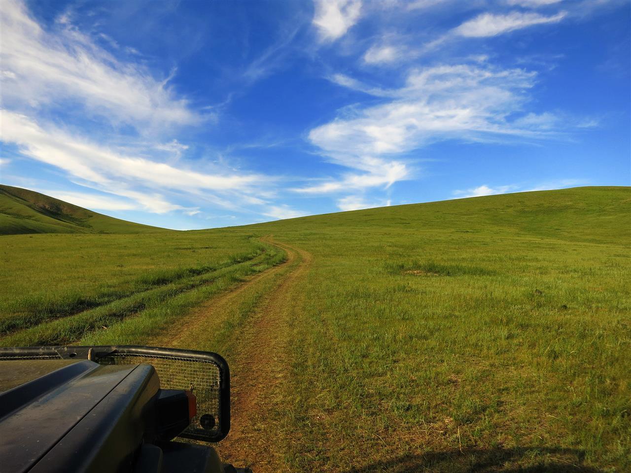 alles schön grün (Mongolei)