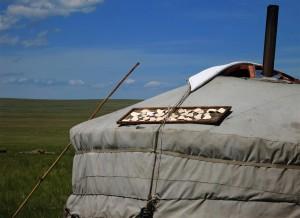 Aaruul, getrockneter Quark (Mongolei)