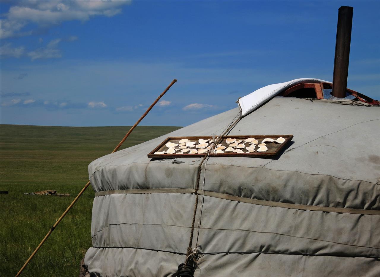 Aruul, getrockneter Quark (Mongolei)