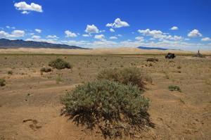 Khongoryn els (Mongolei)