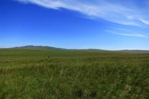 mongolische Steppe (Mongolei)