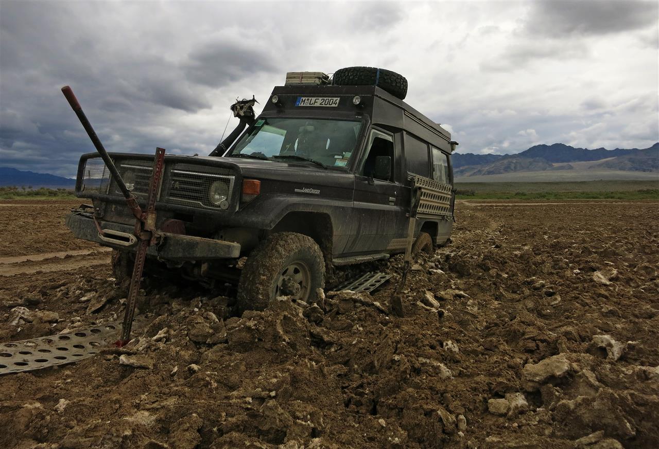 Versumpft im Salzsee (Mongolei)