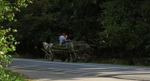 rumänischer Pferdewagen (Rumänien)